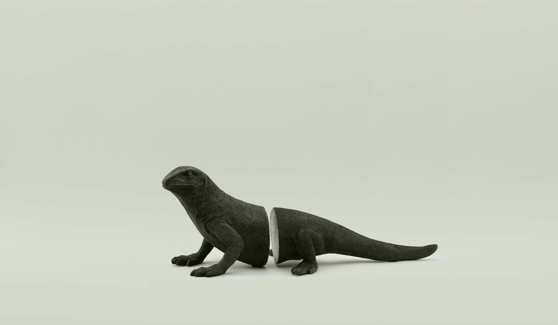 Игуана 160-61